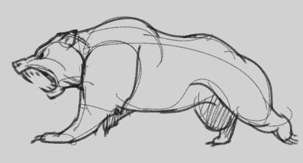 Bear, Sketch